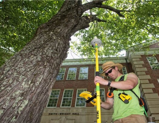 Arborist Consultations-Durant FL Tree Trimming and Stump Grinding Services-We Offer Tree Trimming Services, Tree Removal, Tree Pruning, Tree Cutting, Residential and Commercial Tree Trimming Services, Storm Damage, Emergency Tree Removal, Land Clearing, Tree Companies, Tree Care Service, Stump Grinding, and we're the Best Tree Trimming Company Near You Guaranteed!