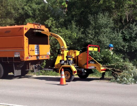 Commercial Tree Services-Durant FL Tree Trimming and Stump Grinding Services-We Offer Tree Trimming Services, Tree Removal, Tree Pruning, Tree Cutting, Residential and Commercial Tree Trimming Services, Storm Damage, Emergency Tree Removal, Land Clearing, Tree Companies, Tree Care Service, Stump Grinding, and we're the Best Tree Trimming Company Near You Guaranteed!